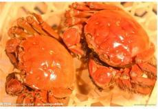 上海大閘蟹專賣口碑最好的是哪家