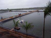 供應南陽魚塘防滲膜 養殖薄膜 魚塘橡膠布