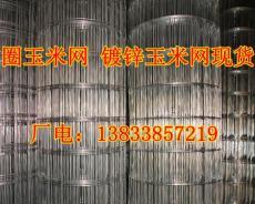 玉米網/鍍鋅圈玉米網現貨供應