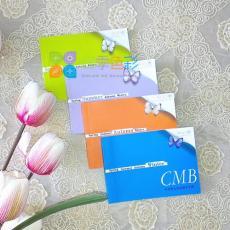 四季色彩服装搭配用色指导书口袋书