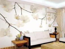 甘肅蘭州裝飾壁紙種類