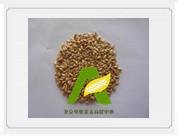 供应大麦芽