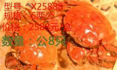 昆山九沐森陽澄湖大閘蟹X25888